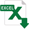 excel 100